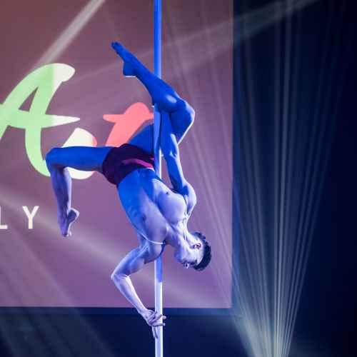 pole art italy 2016 men elite 2