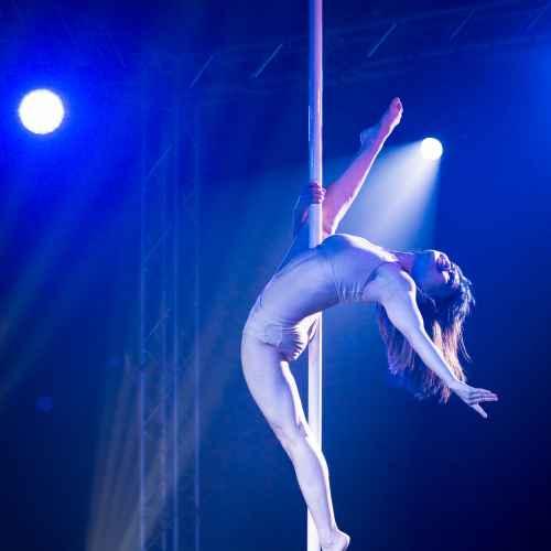 pole art italy 2016 women elite 133