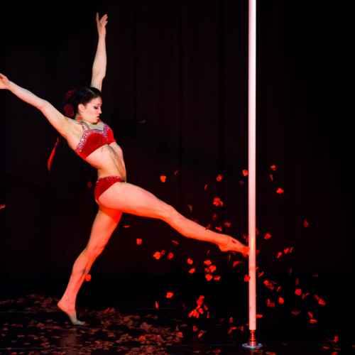 Pole art italy 2015 donne 30