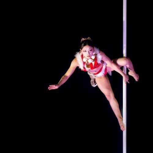 Pole art italy 2015 donne 09