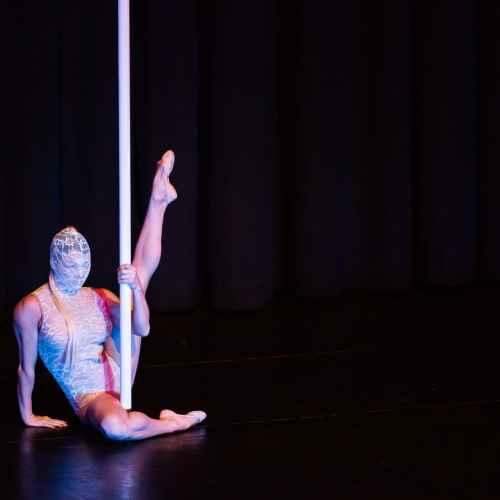 Pole art italy 2015 coppie 26