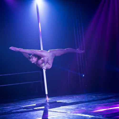 pole art italy 2016 women elite 113