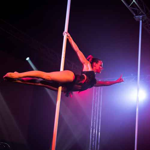 pole art italy 2016 women elite 8